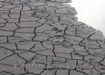 Cuando se seca mi arroyo. 1 Reyes 17:1-2